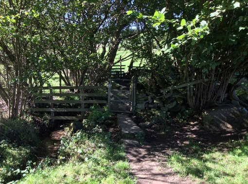 A gate on the path just a couple of yards after the previous stile