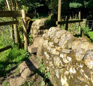 The first stile on the walk. Each stile was bookmarked on the myTracks recorded walk