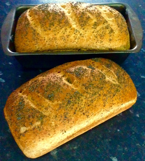The two loaves baked today, one still in the tin, the other out