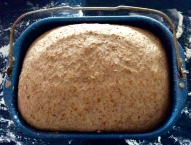 After the first rising in the breadmaker (dough programme)