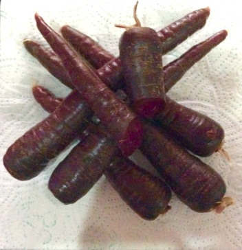 Purple carrots, sold as 'witches' noses
