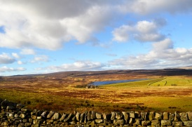 Barden moor, our most recent moorland walk, about 1/2 hour in the car from home