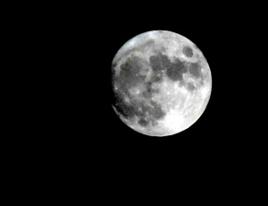 A photo of the moon taken from my sitting room window